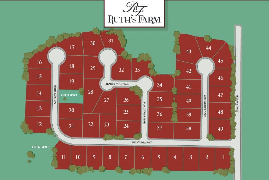 Ruths Farm Alpharetta Neighborhood Site Plan